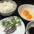 毎年6月10日に広島で解禁する小イワシ。おすすめの食べ方は玉子掛けごはんとのコラボなんです。