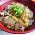 鶏ひき肉も玉子も引き立て役だ。ごぼうが主役のザ、ごぼう丼。